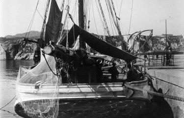 El president Irla era propietari d'un dels últims velers comercials de Sant Feliu?